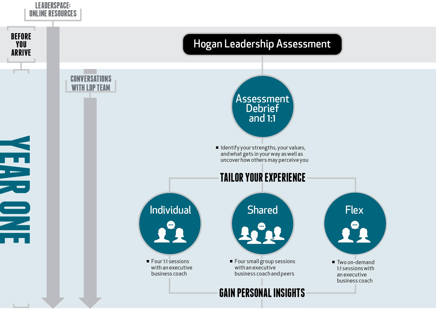 LDP Pathway to Leadership