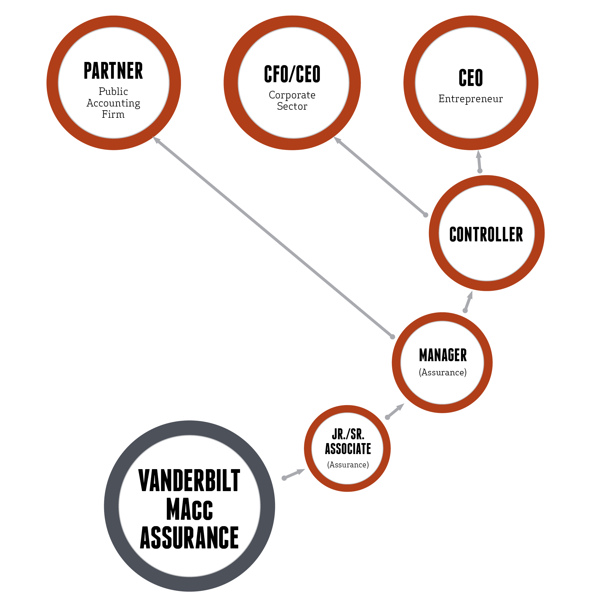 MAcc Assurance Career Paths Graphic