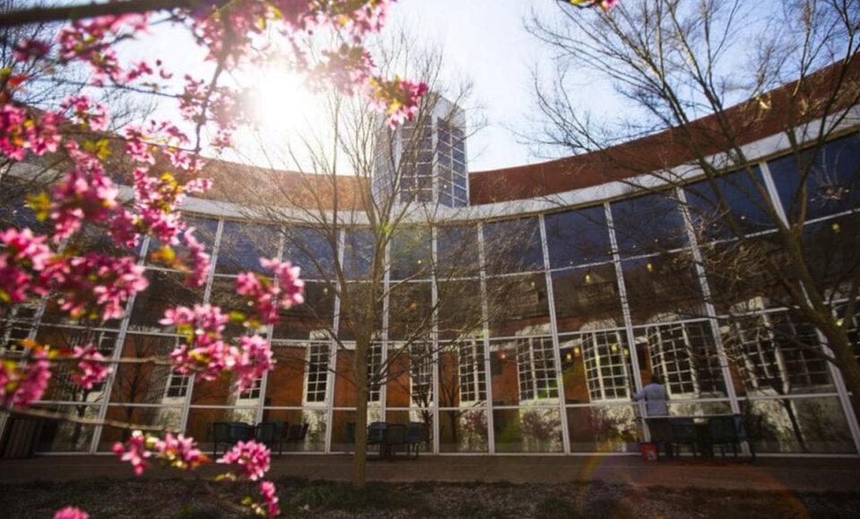 Vanderbilt MBA Class of 2021 Posts Strong Employment Outcomes